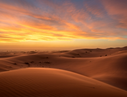 The Sahara Desert: Round Trip from Marrakech